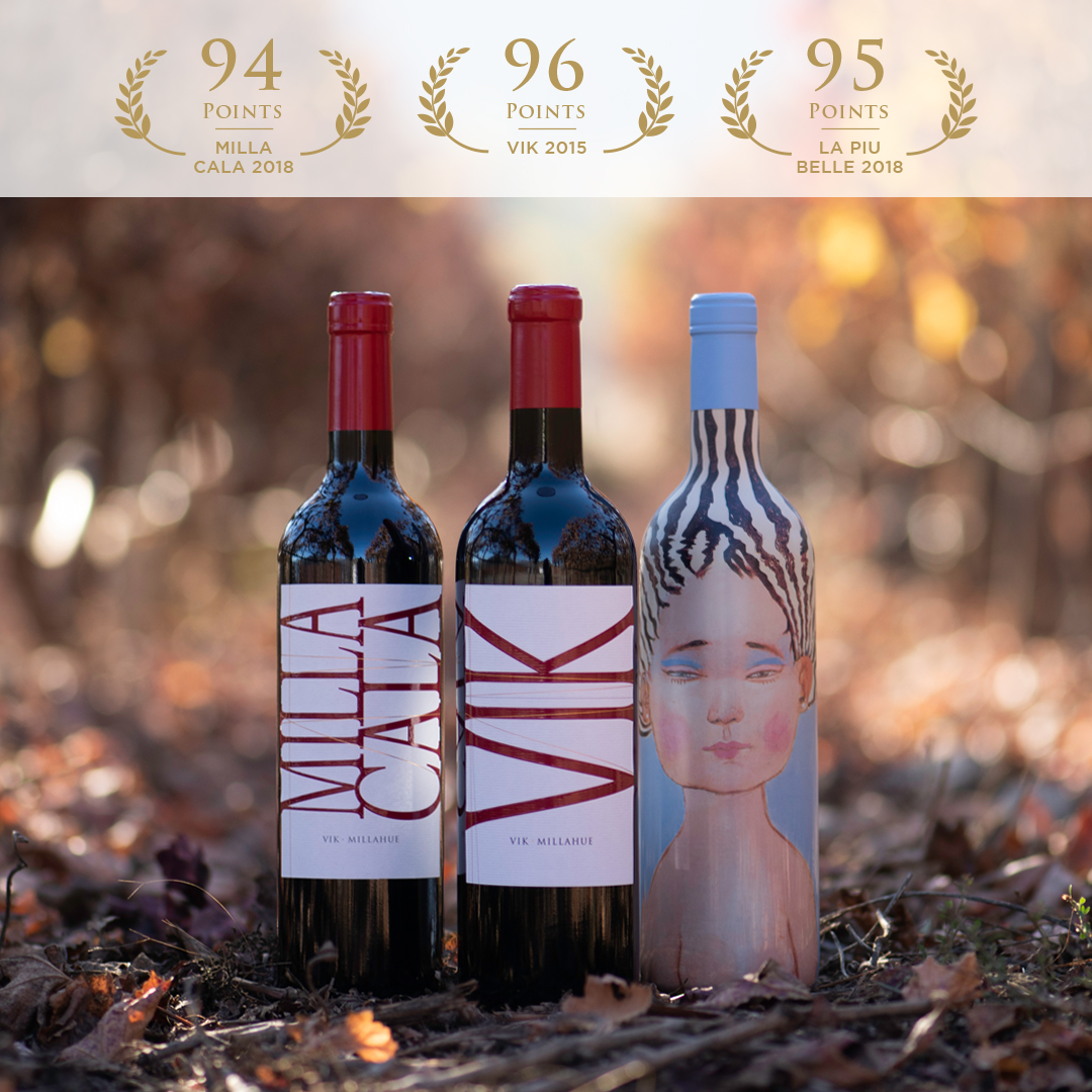 VIK 2014 REACHES 98 POINTS AT THE TASTING PANEL MAGAZINE'S REVIEW.